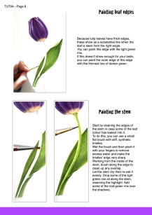 purple tulip sample page