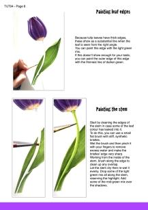 purple tulip sample page